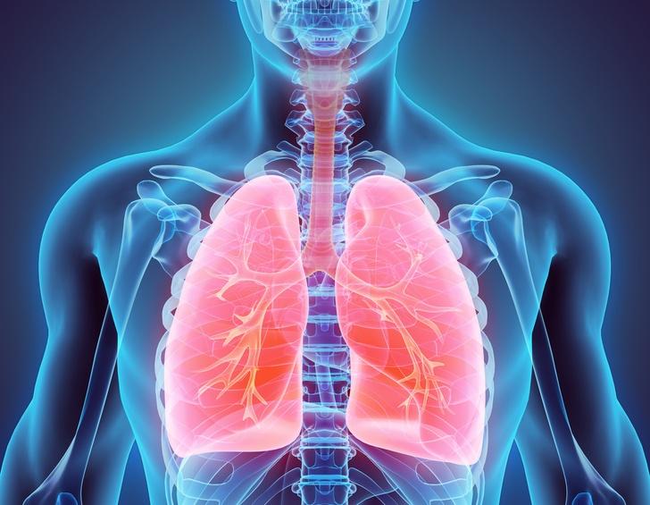 چگونگی پاکسازی ریه ها در طب سنتی