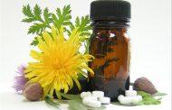 با 7 مسکن قوی گیاهی در طب سنتی آشنا شوید
