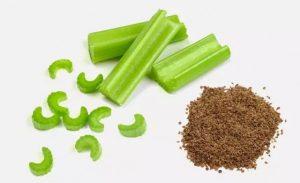اصلاح تغذیه در طب سنتی