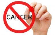گیاهانی که به جنگ سرطان میروند
