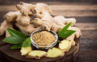 لاغری و کاهش وزن در طب سنتی با زنجبیل