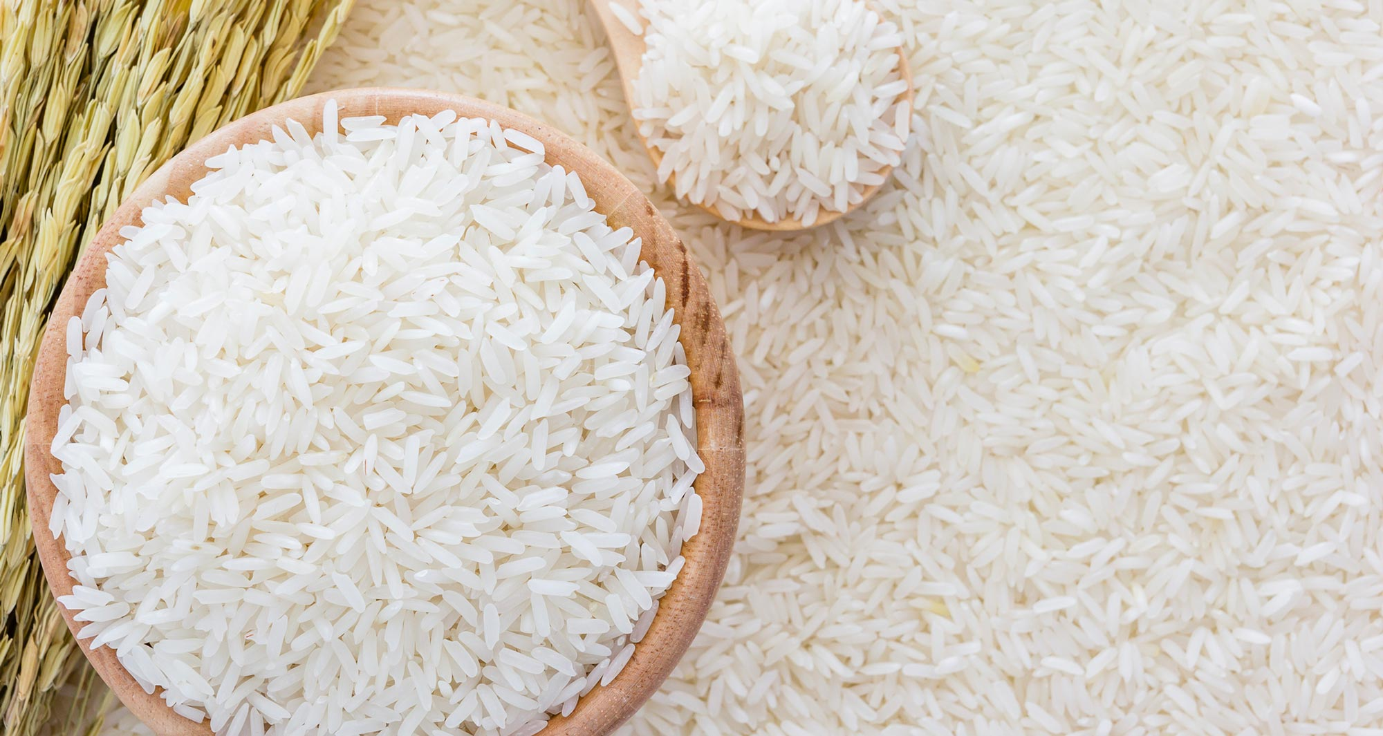 جایگاه برنج از نظر طب سنتی