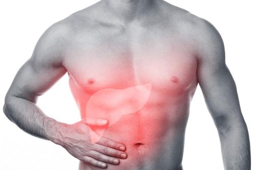 سرطان کبد و درمان آن در طب سنتی