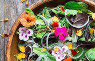 تدابیر فصل بهار در طب سنتی