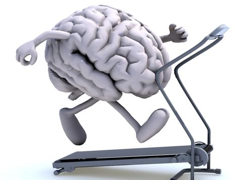 تقویت مغز در طب سنتی